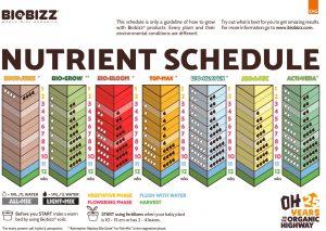 Biobizz nutrient schedule