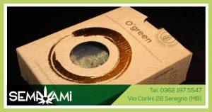 cannabis light O' green Green Lab Italia