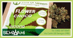 Sea of Green Flower Choco