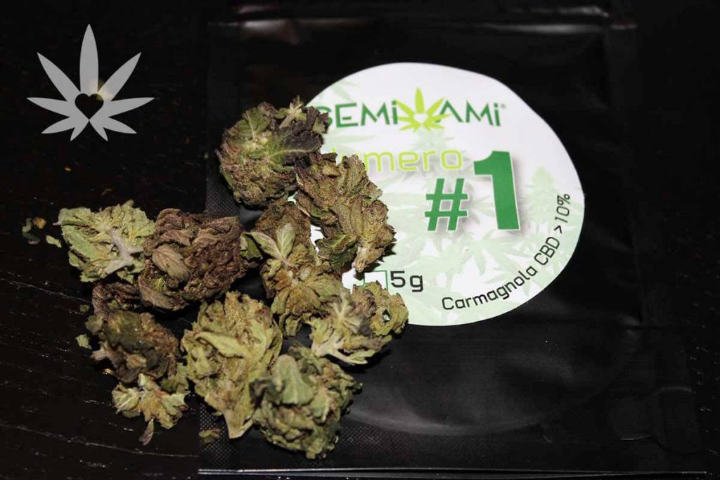 Numero #1 Semi Ami