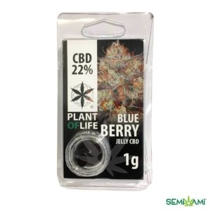 BlueBerry CBD Plant of Life