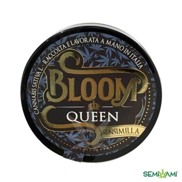 Queen Bloom