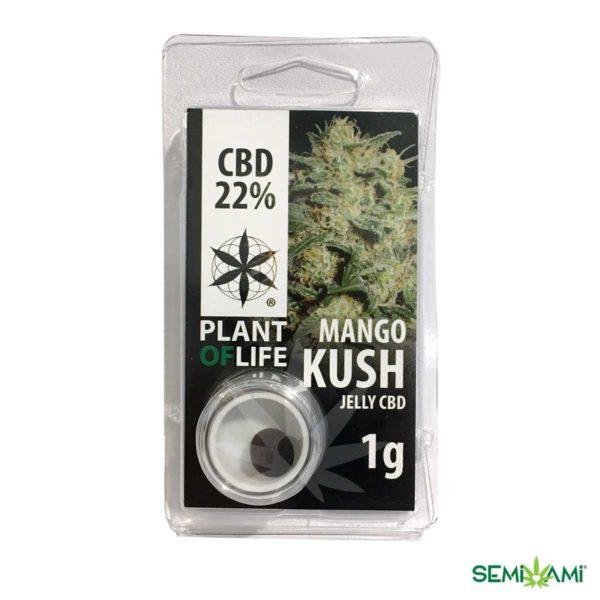 Mango Kush CBD Plant of Life