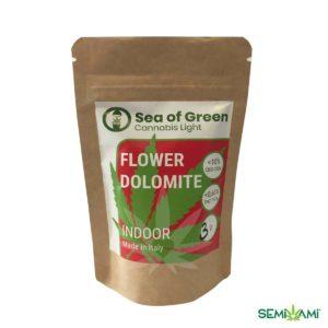 Flower Dolomite 3 g Sea of Green